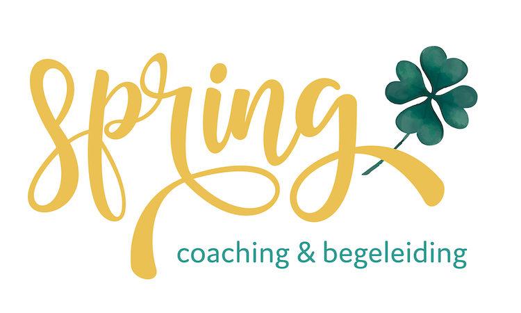 Spring Begeleiding